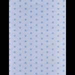 "Канва Аида 18 с фоновым рисунком КД-041 19х26см ""МП Студия"""