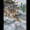 """Канва с рисунком для вышивания гобелена """"Снежные волки"""" 40х50см """"Grafitec"""" (Греция)"""