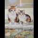 """Канва с рисунком для вышивания гобелена """"Игра котят"""" 40х50см """"Grafitec"""" (Греция)"""