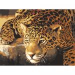"Канва с рисунком для вышивания гобелена ""Крадущийся ягуар"" 40х50см ""Grafitec"" (Греция)"