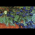 """Канва с рисунком для вышивания гобелена """"Ирисы. Ван Гог"""" 60х90см """"Grafitec"""" (Греция)"""