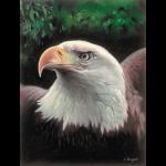 """Канва с рисунком для вышивания гобелена """"Величественный орёл"""" 30х40см """"Grafitec"""" (Греция)"""
