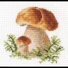 """Набор для вышивания """"Белые грибы"""" """"Алиса"""""""