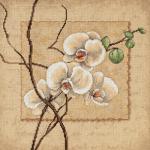"""Набор для вышивания """"Восточная орхидея"""" """"Dimensions"""""""