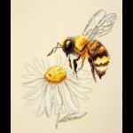 """Набор для вышивания """"Пчела"""" """"Марья Искусница"""""""