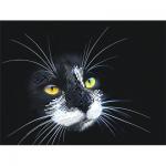 """Рисунок на шелке для вышивания бисером """"Чёрный кот"""" """"Матренин Посад"""""""