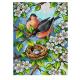 """Канва-страмин с рисунком OR2659 """"Семейное гнездо"""" 30х40см """"Orchidea"""""""