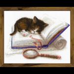 """Набор для вышивания """"Котёнок на книжке"""" """"Риолис"""""""