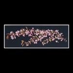 """Набор для вышивания """"Цветение сакуры"""" """"Thea Gouverneur"""""""