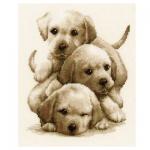 "Набор для вышивания ""Три щенка лабрадора"" ""Vervaco"""