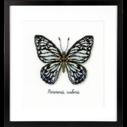 """Набор для вышивания """"Голубая бабочка"""""""