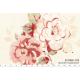 """Ткань для пэчворк (60x110см) 31068-10 из коллекции """"Durham Quilt"""" """"Lecien"""" (Япония)"""