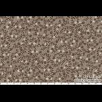 """Ткань для пэчворк (50x55см) 31179-80 из коллекции """"Mrs. Marchs in Antique"""" """"Lecien"""" (Япония)"""