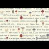 """Ткань для пэчворк (50x55см) 31504-10 из коллекции """"American Country"""" """"Lecien"""" (Япония)"""