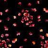 """Ткань для пэчворк (50x55см) 8404-J из коллекции """"Catalina"""" """"Maywood""""(США)"""