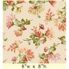 """Ткань для пэчворк (60x110см) 8502-E из коллекции """"Sophia"""" """"Maywood""""(США)"""