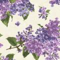 """Ткань для пэчворк (60x110см) 8600-E из коллекции """"Fresh lilacs"""" """"Maywood""""(США)"""