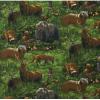 """Ткань для пэчворк (60x110см) 13624-270 из коллекции """"Nature studies"""" """"Robert Kaufman""""(США)"""