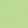 """Ткань для пэчворк (50x55см) Honey Dew из коллекции """"Kona Cotton"""" """"Robert Kaufman""""(США)"""