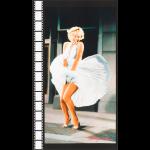 "Ткань для пэчворк (60x110см) 17196-121 из коллекции ""Marilyn Monroe"" ""Robert Kaufman""(США)"