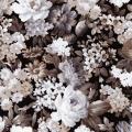 """Ткань для пэчворк (50x55см) 17106-2 из коллекции """"Wexford Garden"""" """"Robert Kaufman""""(США)"""