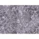 """Ткань для пэчворк (50x55см) 23535MDGRY из коллекции """"Ice"""""""