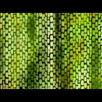 "Ткань для пэчворк (50x55см) 26483GRE из коллекции ""Bargello"" ""Red Rooster Fabrics"""