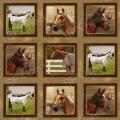 """Ткань для пэчворк (60x110см) 25322MUL из коллекции """"World of Horses"""" """"SPX Fabrics"""" (США)"""