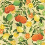 """Ткань для пэчворк (60x110см) 25487BEI из коллекции """"Citrus Grove"""" """"SPX Fabrics"""" (США)"""