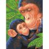 """Набор для раскрашивания """"Шимпанзе с детёнышем"""" 23х30,5см """"Dimensions"""""""