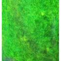 """Шерсть овечья для фелтинга, желто-зеленая """"Efco"""" (Германия)"""