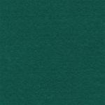"Фетр декоративный т.зелёный 1мм 30х45см FKC10-049 ""Gamma"""