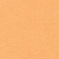 """Фетр декоративный персиковый 1мм 30х45см FKC10-100 """"Gamma"""""""