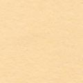 """Фетр декоративный св. бежевый 1мм 30х45см FKC10-CH661 """"Gamma"""""""