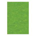 "Фетр 1мм яр. зеленый 30х45см FKG1-027 ""Gamma"""