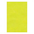 "Фетр 1мм салатовый 30х45см FKG1-035 ""Gamma"""