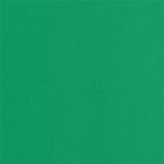 """Пластичная замша зелёная 1мм 50х50см """"MrPainter"""""""