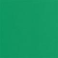 """Пластичная замша зелёная 2мм 50х50см """"MrPainter"""""""