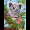 """Набор для картины шерстью """"Добродушная коала"""" """"Woolla"""""""