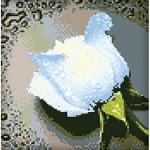"""Набор для картины стразами """"Белая роза"""" """"Алмазная живопись"""""""