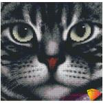 """Набор для картины стразами """"Мордочка кота"""" """"Алмазная живопись"""""""