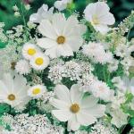 """Набор для картины стразами """"Белые полевые цветы"""" """"Алмазная живопись"""""""