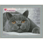 """Набор для картины стразами """"Британский кот"""" """"Алмазная живопись"""""""