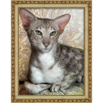 """Набор для картины стразами """"Ориентальный кот"""" """"Алмазная живопись"""""""