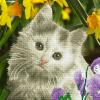 """Набор для картины стразами """"Милый котёнок"""" """"Фрея"""""""