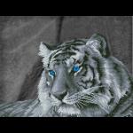 """Набор для картины стразами """"Загадочный тигр"""" """"Фрея"""""""