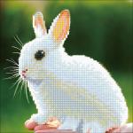 """Набор для картины стразами """"Белый кролик"""" """"Фрея"""""""