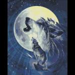 """Набор для картины стразами """"Лунные волки"""" """"Паутинка"""""""